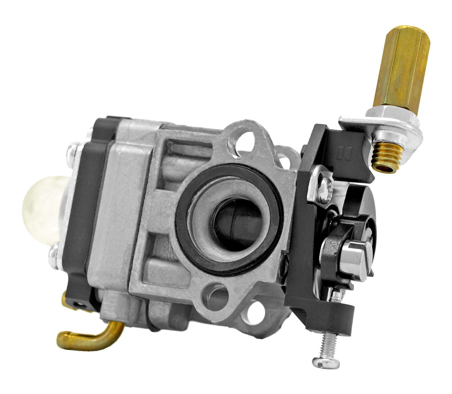 Raisman 46-WYJ-192 Carburetor Echo