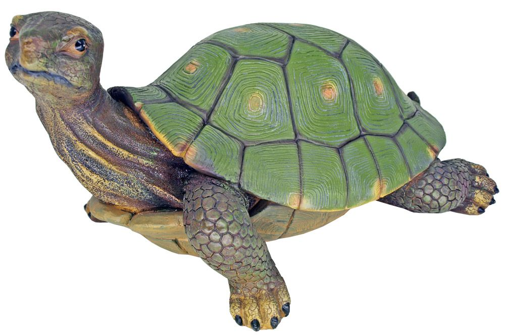 Slow & Steady Turtle Statue