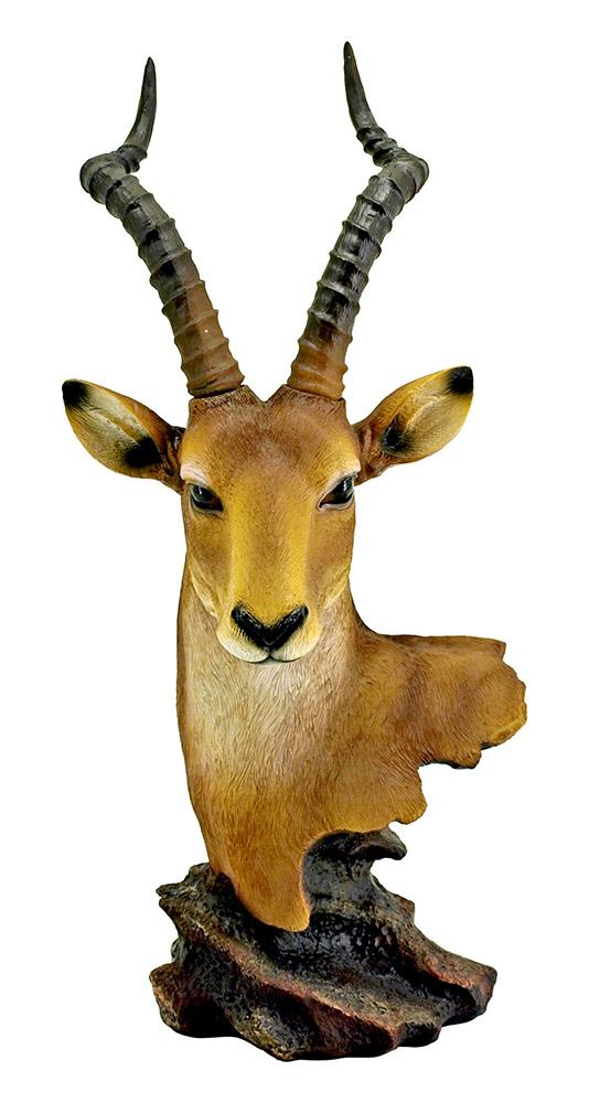 Sundance - Antelope Bust