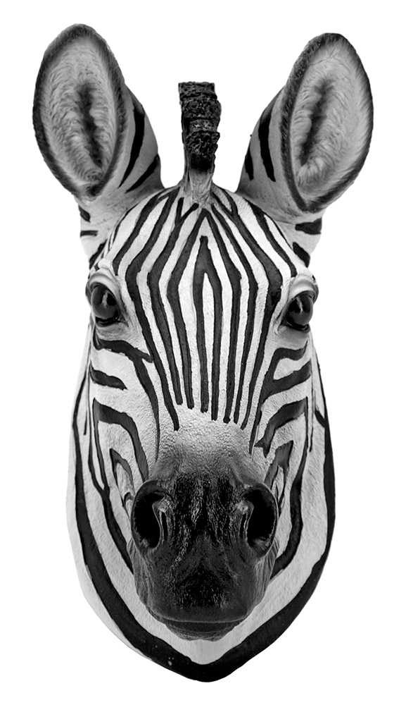 Safari Wild - Zebra Wall Mount