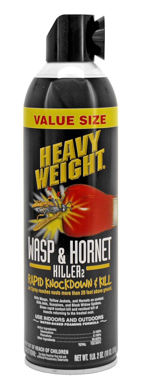 Wasp and Hornet Killer Spray