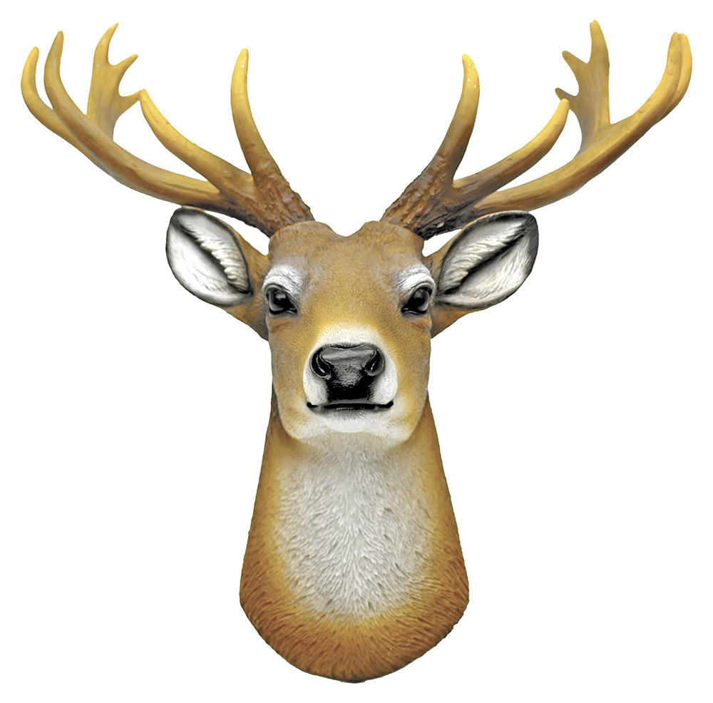 Stag Deer Head - Wall Mount