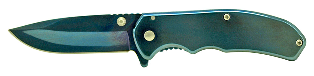 3.75 in Spring Assisted Stainless Steel Folding Knife - Blue