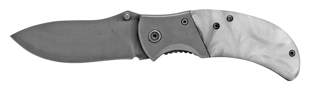 4 in Spring Assisted Folding Knife - Silver