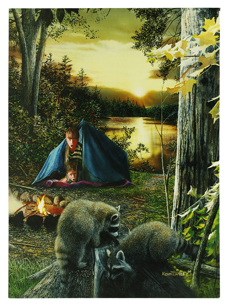 16 in x 12 in LED Canvas Wall Art - Kids Raccoon