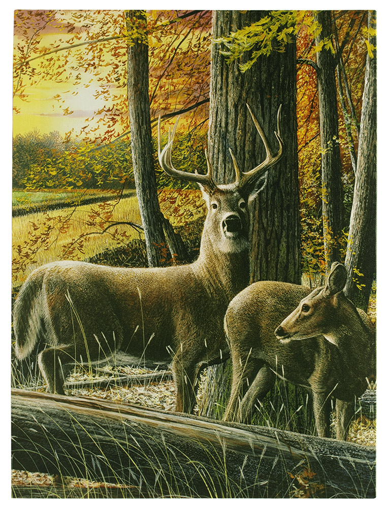 16 in x 12 in LED Canvas Wall Art - Autumn Whitetails