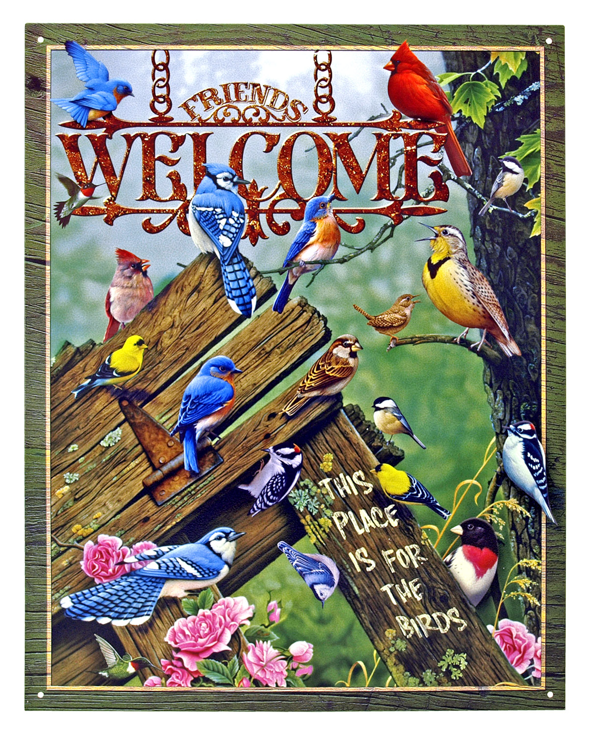 Welcome, This Place is for the Birds - Tin Sign