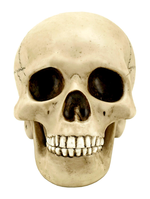 Macbeth Skull Statue Figurine