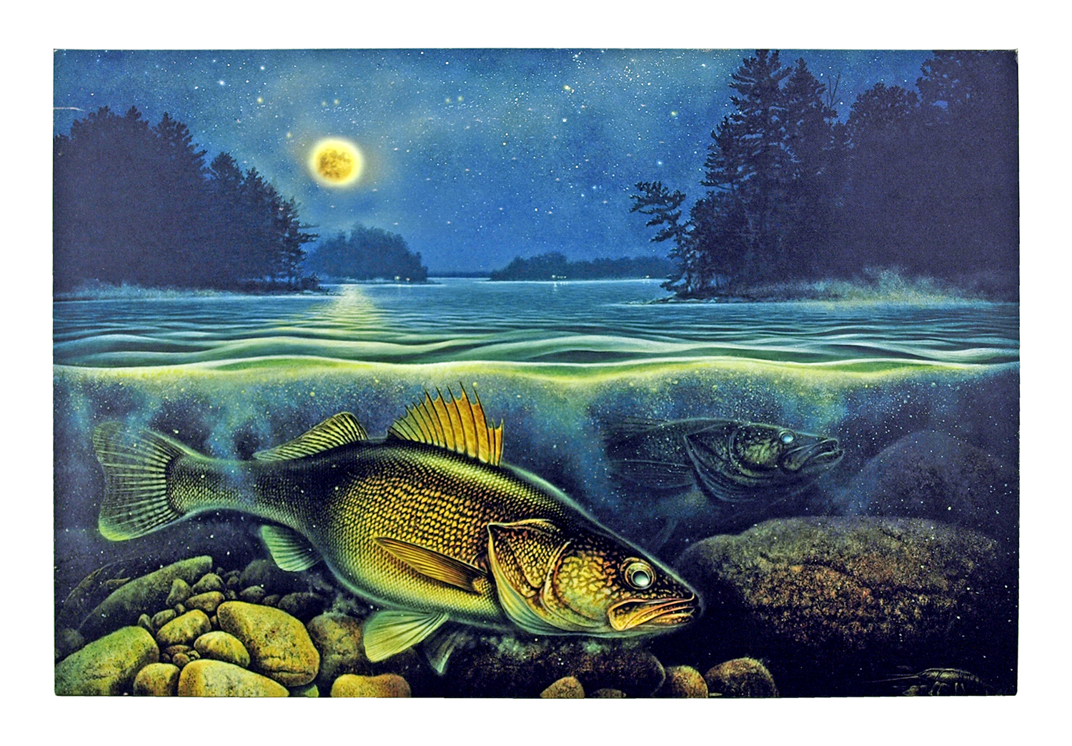 16 in x 12 in LED Canvas Wall Art - Harvest Moon Walleye III