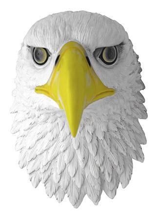 Eagle's Vigil Eagle Bust
