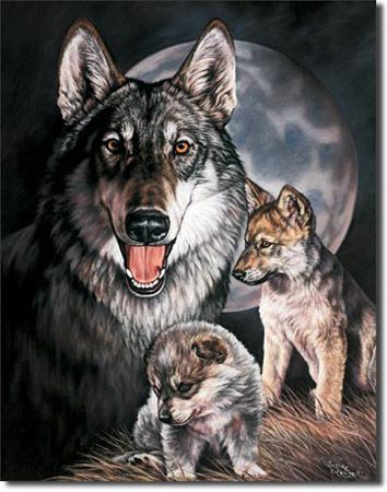 Wolf Experience Tin Sign