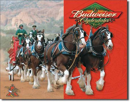 Budweiser Clydesdale Tin Sign