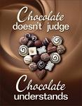 Chocolate Doesn't Judge Tin Sign