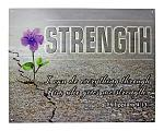 Philippians 4:13 Bible Verse Christian Church Metal Tin Inspiration Sign