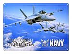 Torch of Freedom American Navy Top Gun Fighter Plane Tin Metal Wall Sign