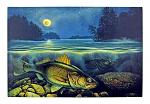 "24"" x 16"" LED Canvas Wall Art - Harvest Moon Walleye III"
