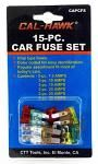 15-pc. Car Fuse Set