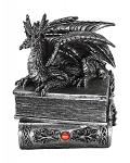 Guardian of Bibliophiles Dragon Box