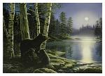 "16"" x 12"" LED Canvas Wall Art - Moonlight Bears"
