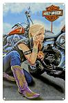 Harley Davidson Finishing Touch Tin Sign